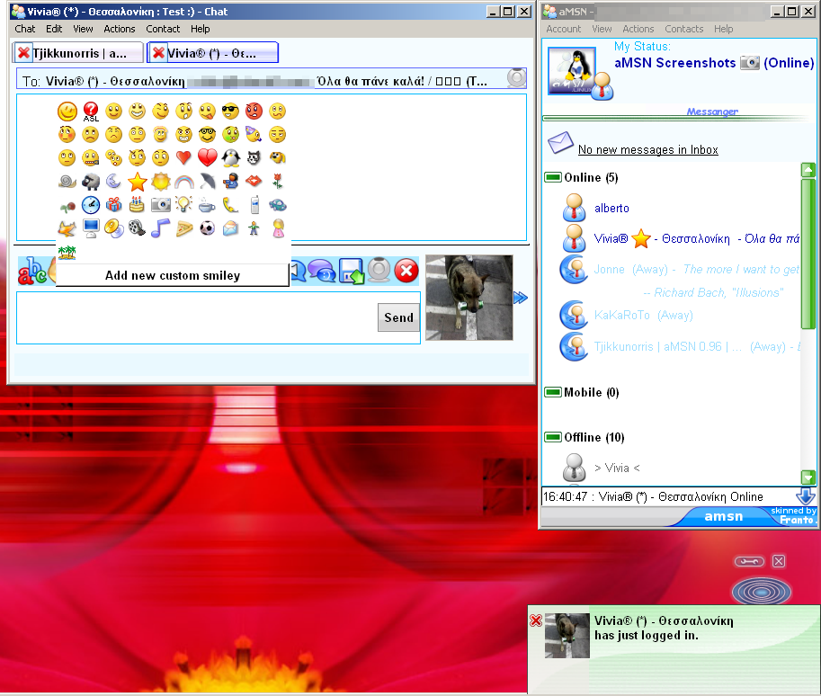 For free windows msn messenger 10 download How to