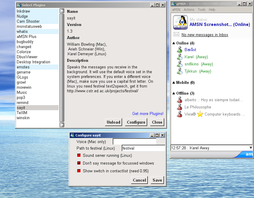 aMSN for Linux full screenshot